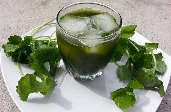 Nước rau má thức uống giải nhiệt cho trẻ